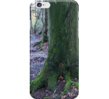 Grims Ditch, Buckinghamshire iPhone Case/Skin