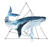 Big blue whale. Watercolour illustrator by KatyaBranch
