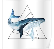 Big blue whale. Watercolour illustrator Poster