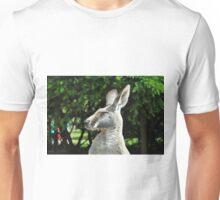 Ninja Kangaroo Unisex T-Shirt