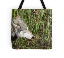 Little Reed Tote Bag