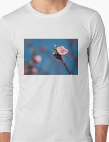 Spring pink cherry blossom with sky background Long Sleeve T-Shirt