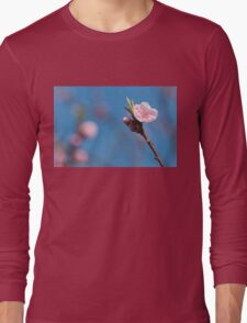 Pink cherry flowering  with sky background Long Sleeve T-Shirt