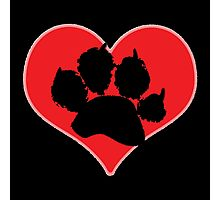 Paw Print Heart 2: Red and Black Photographic Print
