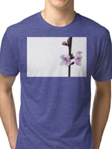 Spring pink cherry blossom with white background Tri-blend T-Shirt