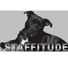 Staffitude Photographic Print