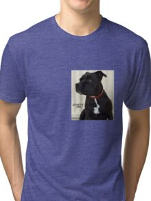 Staffy Dog Tri-blend T-Shirt
