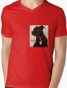 Staffy and Proud Mens V-Neck T-Shirt