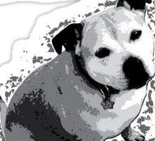 My Other Girlfriend Is A Staffy in Black and White Sticker