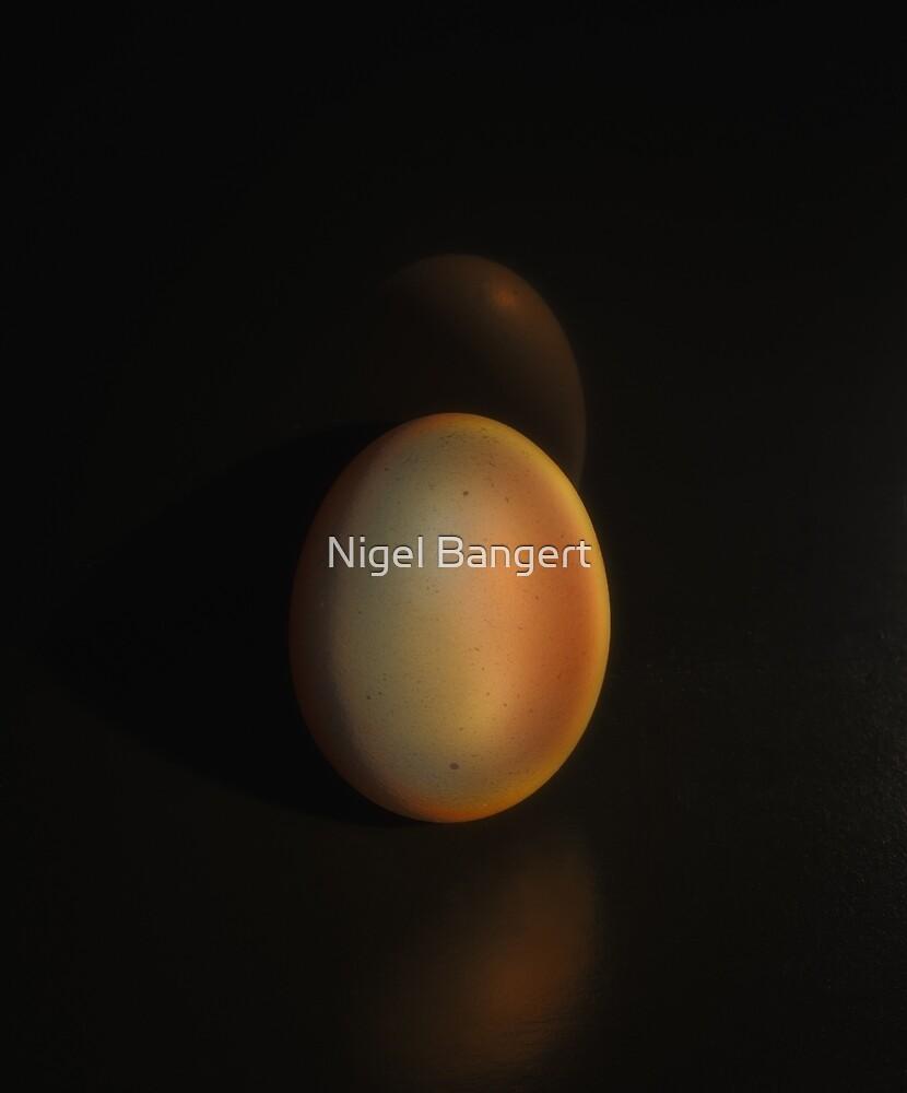 The Golden Egg by Nigel Bangert