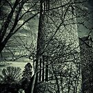Holy Trinity Church Bungay by Simon Duckworth
