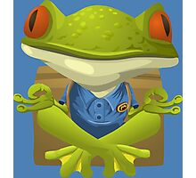 Goofy Little Meditating Green Tree Frog Photographic Print