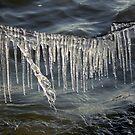 Ice Curtain by Jo Nijenhuis
