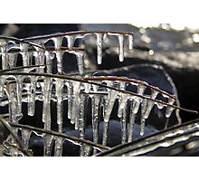 Icicles Photographic Print