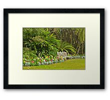 A Flower Waits for You Framed Print