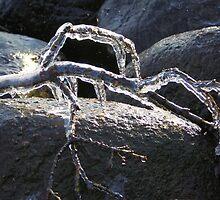 Ice Sculpture by Jo Nijenhuis