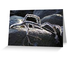 Ice Sculpture Greeting Card