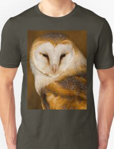 Barn owl on post in early evening sun Unisex T-Shirt