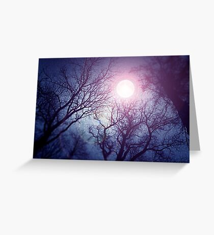 Dark enchanted photo of a full moon in the trees branches background. Blue and violet fairy-tale colors Greeting Card
