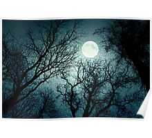 Dark enchanted photo of a full moon in the trees branches background. Blue fairy-tale colors Poster
