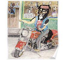 Harley Dog Poster
