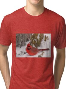 Male cardinal Tri-blend T-Shirt