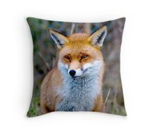 British Red Fox sat waiting  Throw Pillow