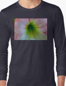 Amaryliss 4  Long Sleeve T-Shirt