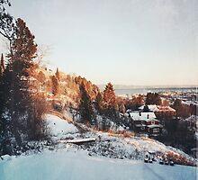 Trondheim. by mrsaraneae