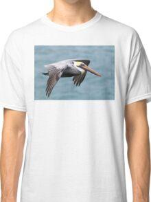 Pelican in Flight Classic T-Shirt