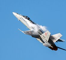 McDonnell Douglas F/A-18C Hornet fighter jet  by maryloufletcher