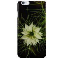 Nutmeg Flower 2 iPhone Case/Skin