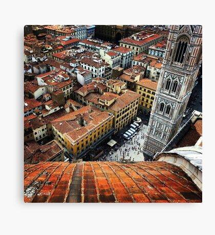 View From The Dome Canvas Print