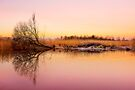 Norfolk Broads by Svetlana Sewell