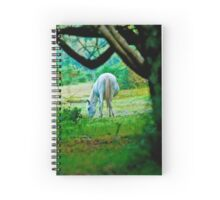 Grey in the woods Spiral Notebook
