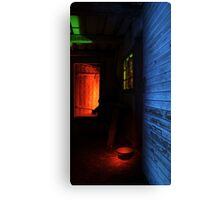 24.1.2016: Light Painted Cowshed Canvas Print