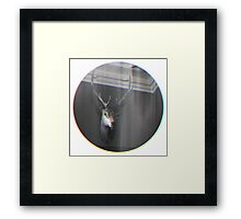 Trophy Head Framed Print