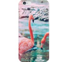 Exotic flamingos iPhone Case/Skin