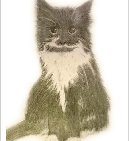 Black and white fluffy cat Sticker