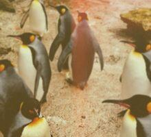 Retro Penguins Sticker