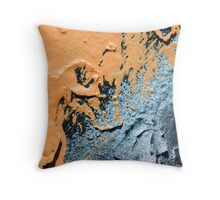 Landscape on a Wall Throw Pillow