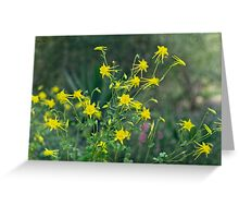A Field of Golden Glory Greeting Card
