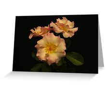 Beauty in Three Greeting Card