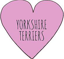 Yorkshire Terrier Love by Bundjum