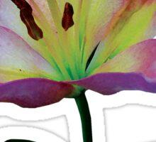 Pink Lily Sticker