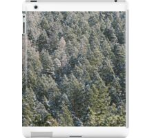 Lost in Pine iPad Case/Skin