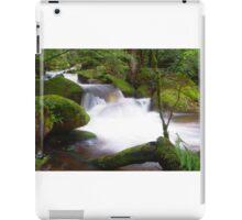 Marysville Cascades, Victoria iPad Case/Skin