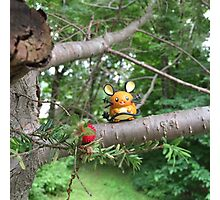 A Wild Dedenne Appears! Photographic Print