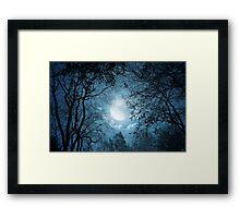 Light Forest Framed Print