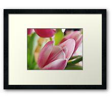 Tulips, Threelips, Fourlips Framed Print